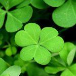 Hechizos de buena suerte que traerán suerte y dinero